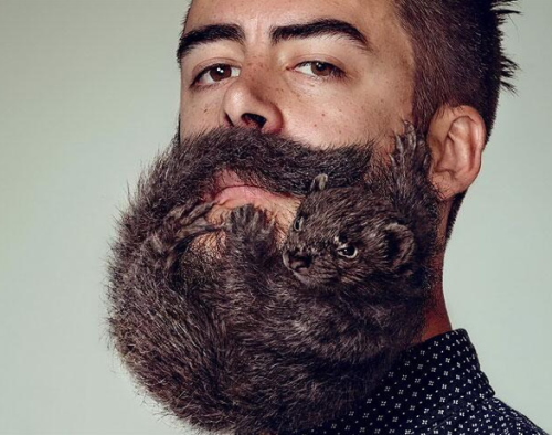 Grossest beard in the world disgusting facial hair long beards women who love hairy men in relationships